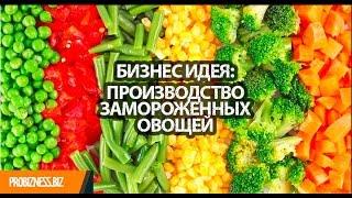 Бизнес идея производство замороженных овощей