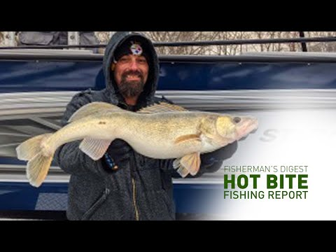 Walleyes On Lake Erie And More!!! - Hot Bite Fishing Report - Feb 18th