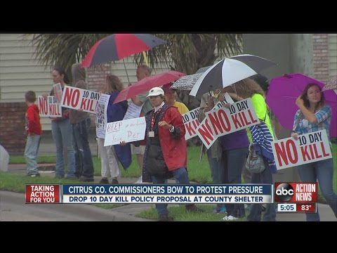 Protest in Citrus County over proposed 10 day animal shelter kill policy