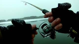 Хорошая рыбалка на бюджетных платниках Подмосковья Часть 1