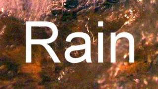 """Sound of Rain"" 90min Sleep and Meditation Video  ""no music"""