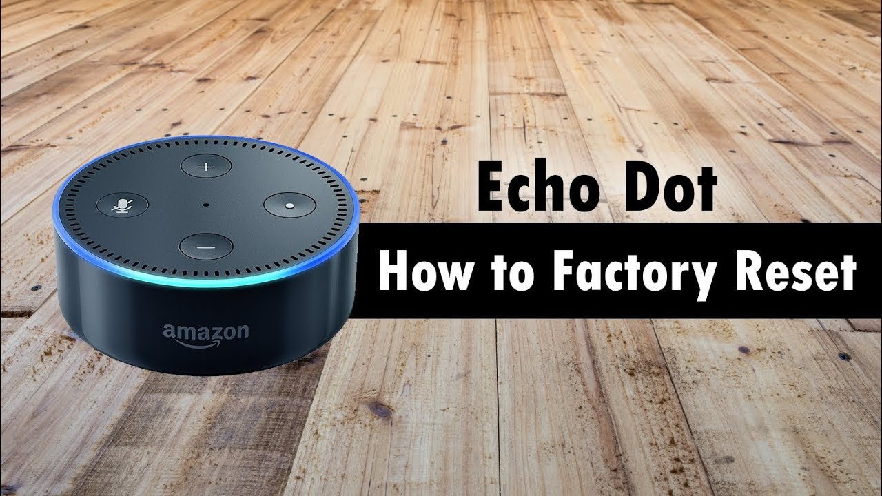 how to stop echo in youtube video