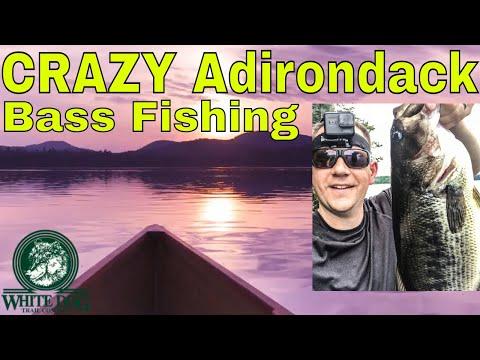 CRAZY Adirondack Bass Fishing - Rollins Pond Camping, Paddling And Fishing