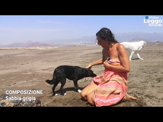 Spiagge a Tenerife con i nostri cani