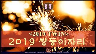 쌍둥이자리 2019년 운세 ( 2019 TWIN tarot for general reading)