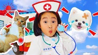 Boram finge ser médico e salva animais de estimação ♥ Pretend Play With Doctor