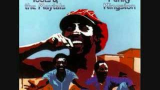 Watch Toots  The Maytals Love Is Gonna Let Me Down video