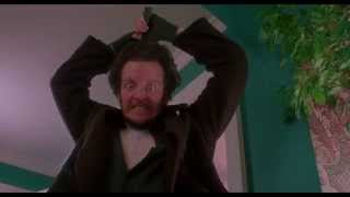 Home Alone In Two Minutes