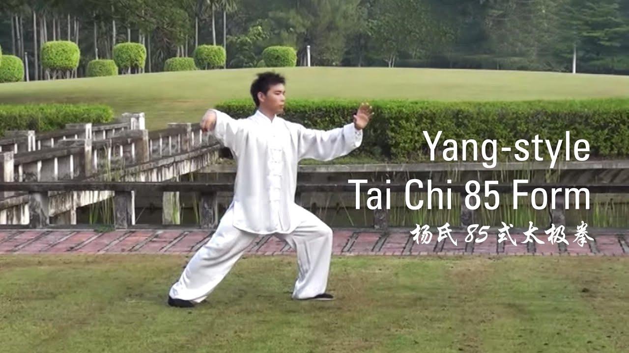 Yang-Style Tai Chi 85 Form : Part 1 (杨氏85式太极拳) - YouTube