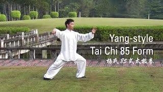 Yang-Style Tai Chi 85 Form : Part 1 (杨氏85式太极拳)
