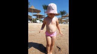 Неделя за 3 минуты Отдых с ребенком Египет 2020 Хургада отель Albatros White Beach Resort 5