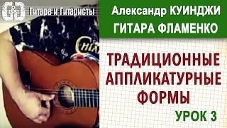 Испанская гитара фламенко. Урок 3. (Не Дидюля)