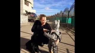 Телеведущая Мария Кравцова станет мамой во второй раз