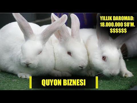 QUYON BIZNESI. Minimal Xarajat Orqali Yillik 18.000.000 So'm Daromad Olish. Rivojuz.