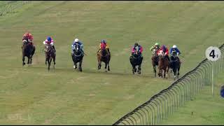 Vidéo de la course PMU PRIX OPEN A TABGOLD ACCOUNT