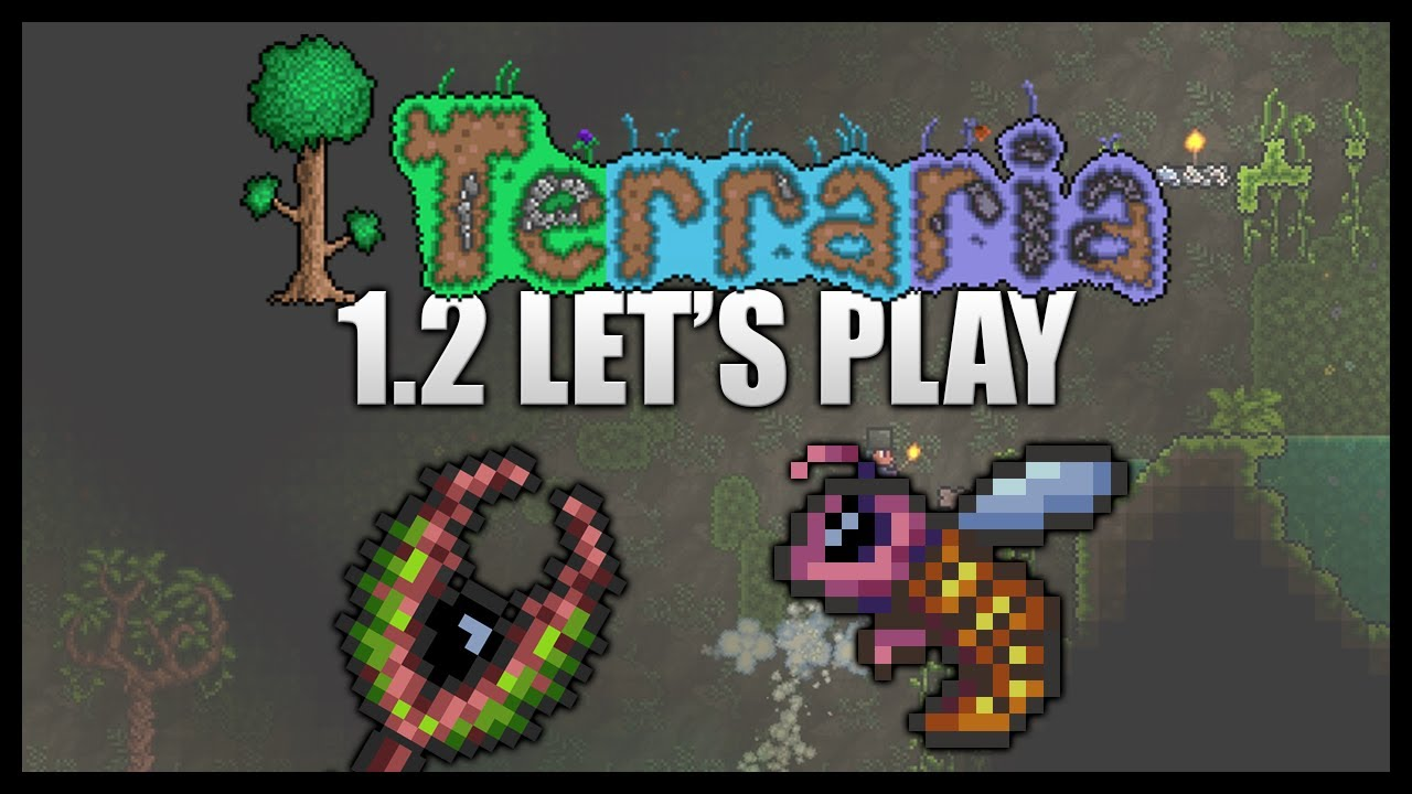 terraria how to find bee hive