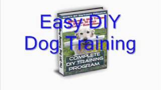 Review: Easy Diy Dog Training By Sharda Baker - Is Www.easy-dog-obedience-training.com A Scam?