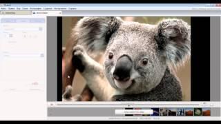 Создание видео из фото и музыки бесплатно в Picasa(Рассмотрим в видео создание видео из фото и музыки бесплатно в программе Picasa. http://chajnikam.ru/computer/223-kak-sdelat-video-iz-fo..., 2016-02-10T22:11:52.000Z)