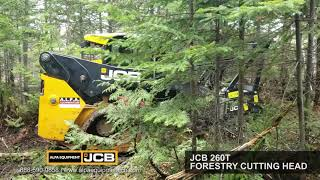 JCB 260T with JCB Forestry Head thumbnail