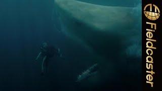 【衝撃】映画「MEG ザ・モンスター」の迫力満点の映像が一部公開