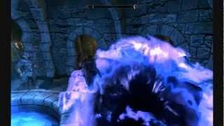 Skyrim : Turned into a zoo - PC