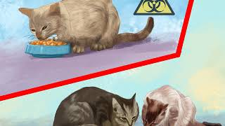 How to Prevent Worms in Cats
