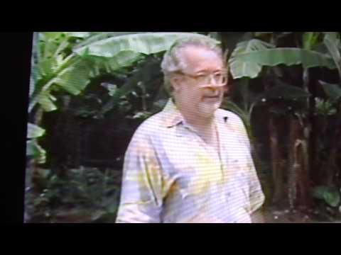 Criaçao de ras em caixas, TV Manchete, com reportagem de Louri Ferreira