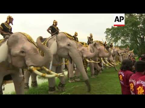 Elephants enlisted to help mark year since Thai kings' death