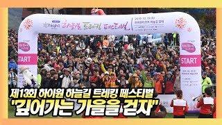 제13회 하이원 하늘길 트레킹 페스티벌