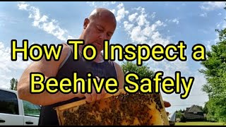 How To Inspect a Beehive Safely