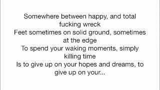 Rise Against - Survive (Acoustic with lyrics)