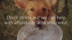 Affordable Auto Insurance Green Bay WI