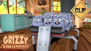 Grizzy se met au sport et ce n'est pas facile - Grizzy & les Lemmings