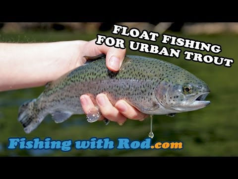 Float Fishing For Urban RAINBOW TROUT   Fishing With Rod