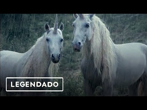 ☆LiL PEEP☆ xhorsehead - right here (legendado)