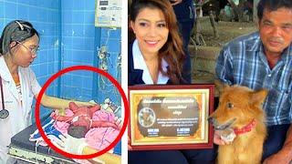 Пёс спас новорожденную девочку, которую мать выбросила на свалку