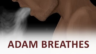 The Beginning and the End with Omar Suleiman: Adam Breathes (Ep39)