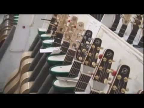 Seagull Guitars Overview