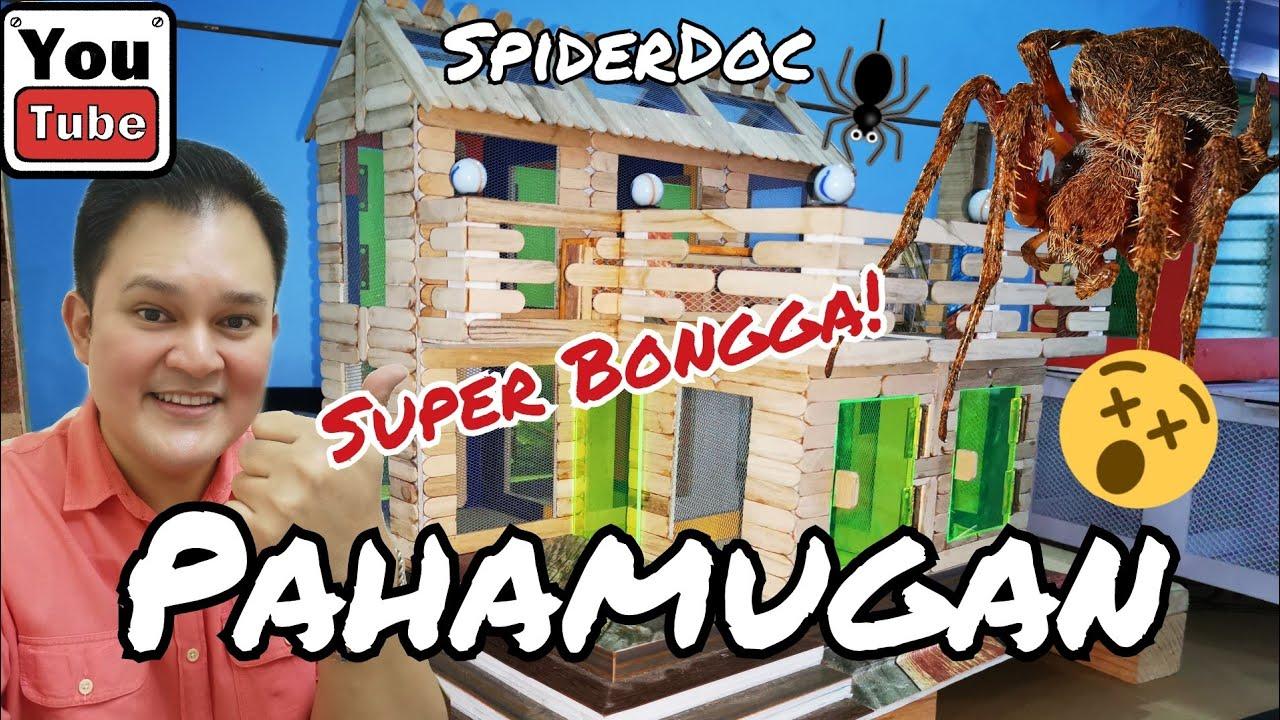 Download SUPER-BONGGA! Pahamugan ng Gagamba from Sayo Nachi! Tagalog Lines at Pitak Unboxing.