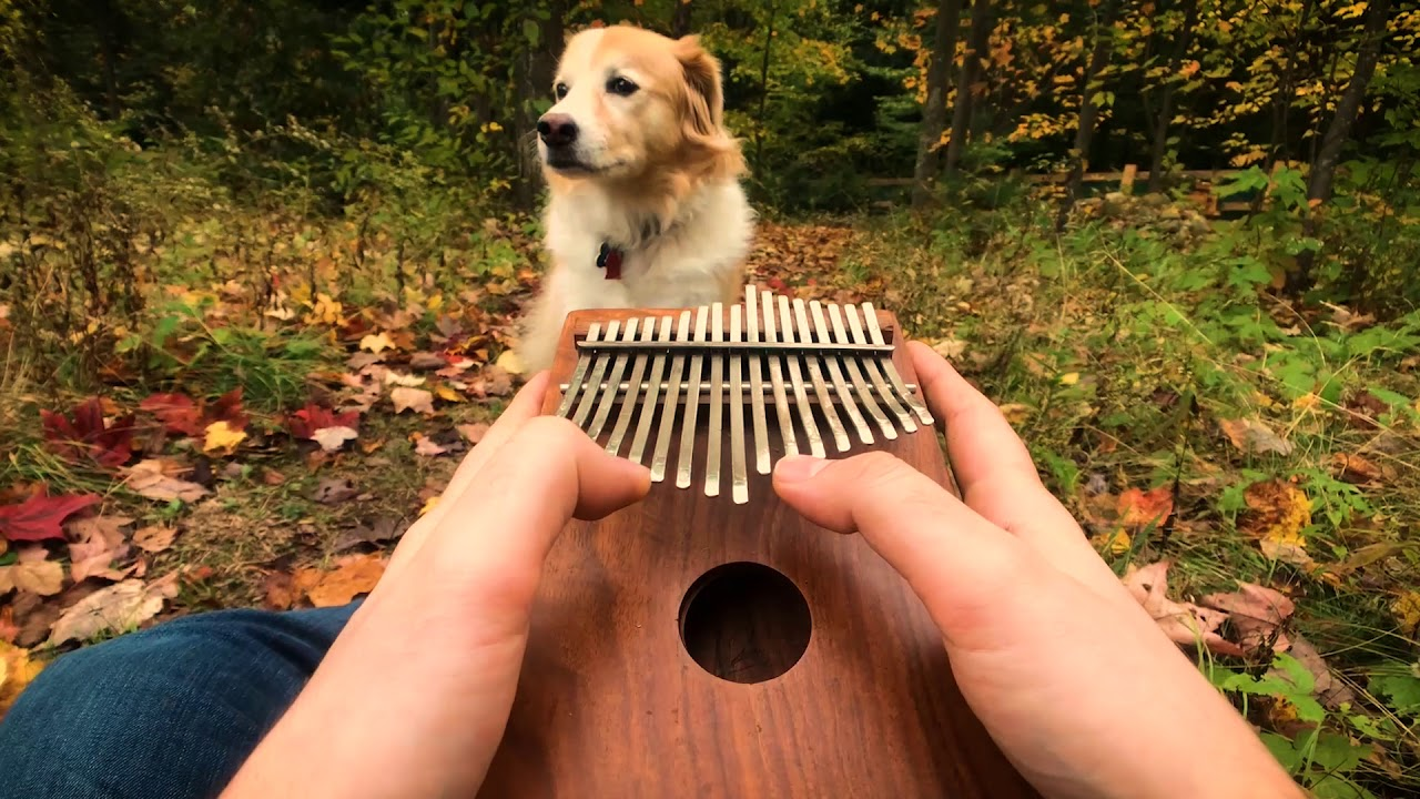 Can T Help Falling In Love On A Kalimba Youtube