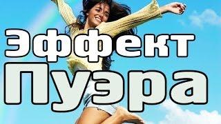 Чай пуэр: эффект пуэра(Пуэр с максимальным эффектом - смола пуэра http://smola-puera.ru [0:08] - какой эффект даёт пуэр? [0:30] - из-за чего получает..., 2014-02-22T10:52:12.000Z)