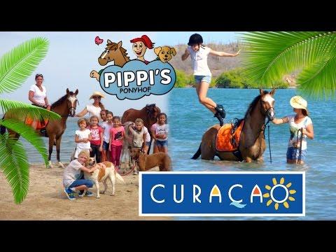 Ik ga naar Curaçao & heb jullie hulp nodig! + WINACTIE | felinehoi