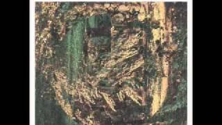 Berriloom -- Toad nr. 9