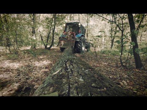 Лісівник - професія для справжніх чоловіків
