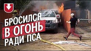 Не оставил друга: в США мужчина бросился в горящий дом ради спасения пса