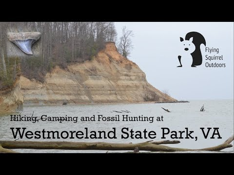 Westmoreland State Park, VA - Hiking, Camping, Fossil Hunting
