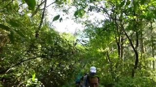 20140913西坑林道-阿玉山野跑
