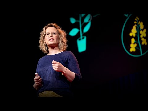 The next software revolution: programming biological cells   Sara-Jane Dunn