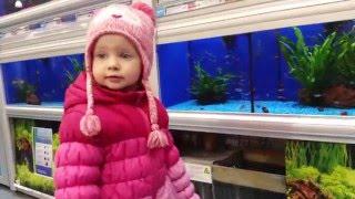 VLOG.Эльвира в зоомагазине смотрит животных.Pet shop
