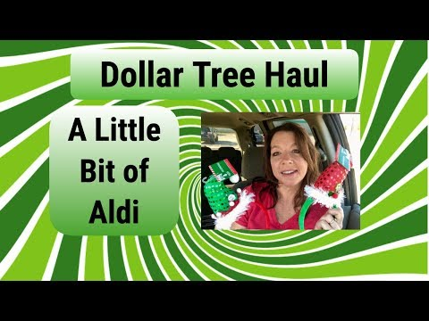 Dollar Tree Haul ~ A Couple of Aldi Items